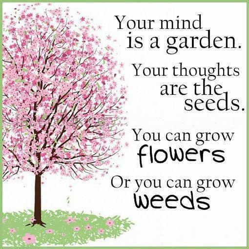 will - your mind is a garden pink tree
