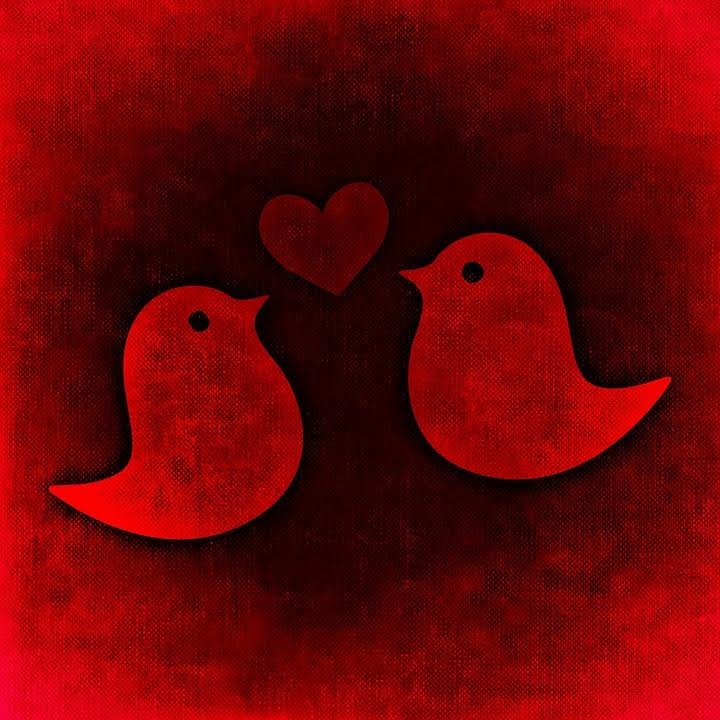 two birds with a heart - red