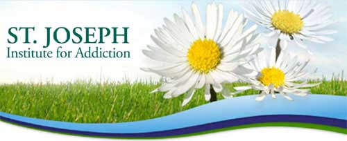 daisies and SJI logo