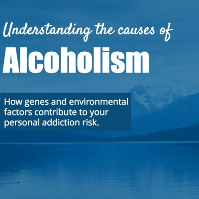 Causes of alcoholism