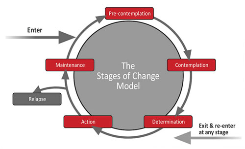 The Stages of Change Model - graphic depicting pre-contemplation, contemplation, determination, action, maintenance as it relates to addiction