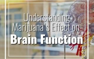 Understanding Marijuana's Effect on Brain Function